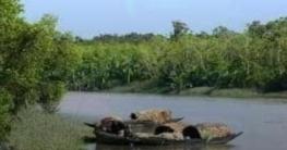 সুন্দরবনের অভয়ারণ্য অঞ্চল থেকে ৮টি নৌকা আটক করেছে বনবিভাগ