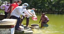 সাতক্ষীরা জেলা পরিষদের পুকুরে মাছের পোনা অবমুক্ত