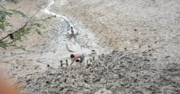 শ্যামনগরে মৎস্য প্রকল্পের গেট ভাংচুরসহ লুটপাটের অভিযোগ