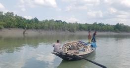 সুন্দরবনে মাছ ধরার সময় ২ জেলে আটক